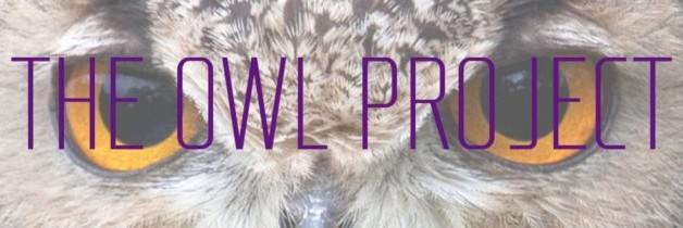 The Owl Project graban su primer trabajo en Letamina